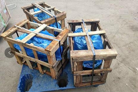 50-110水泵