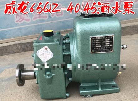 65QZ-40/45N(S)自吸式洒水车泵