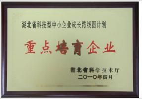 湖北省重点培育企业